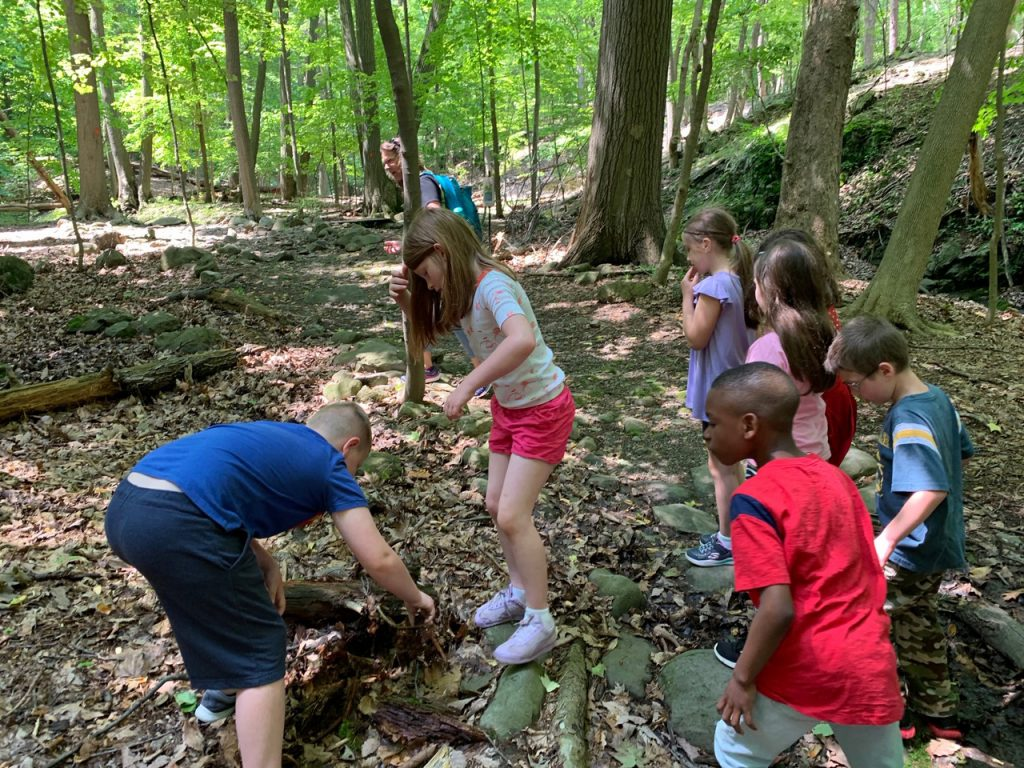 Six elementary students in the woods looking down at the logs and ground looking for insects