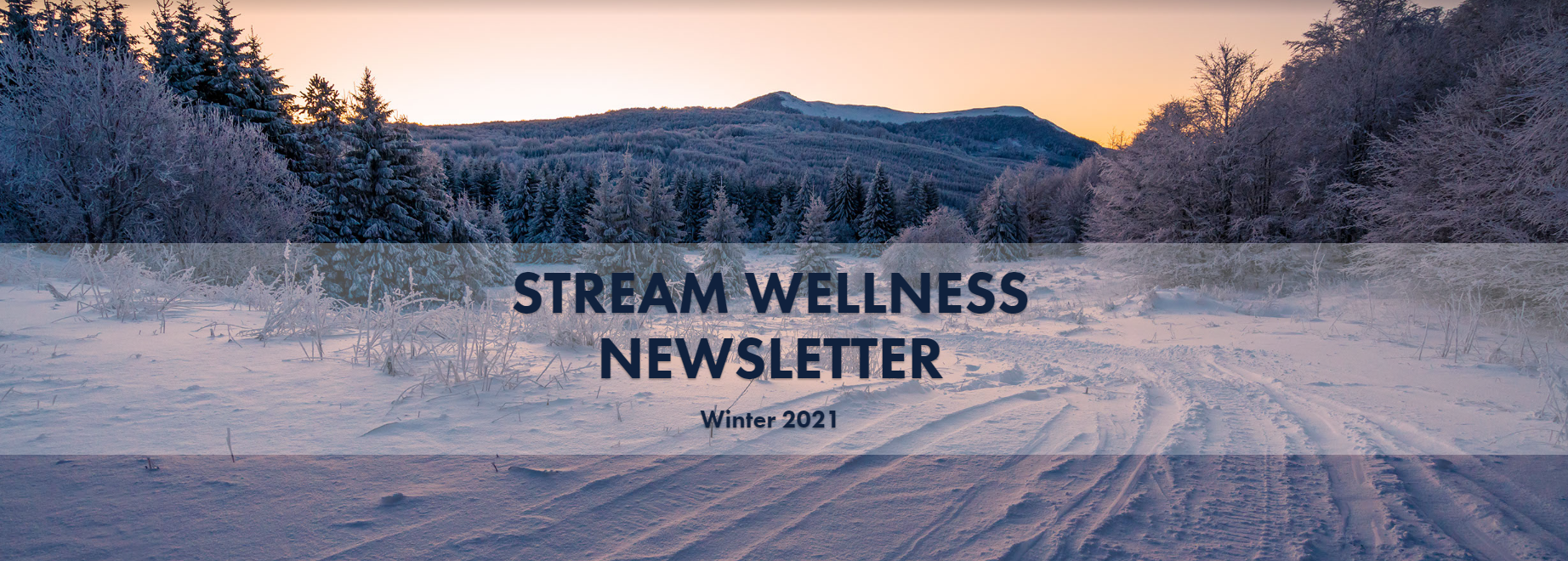 """an image of a mountain covered in snow with the words """"STREAM Wellness Newsletter"""""""