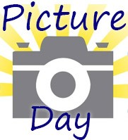 The word Picture on top and Day on the bottom. A drawing of a camera is in the center with strips of yellow coming from it.
